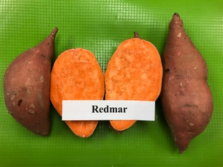 redmar sweet potato