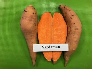 our varieties: vardaman